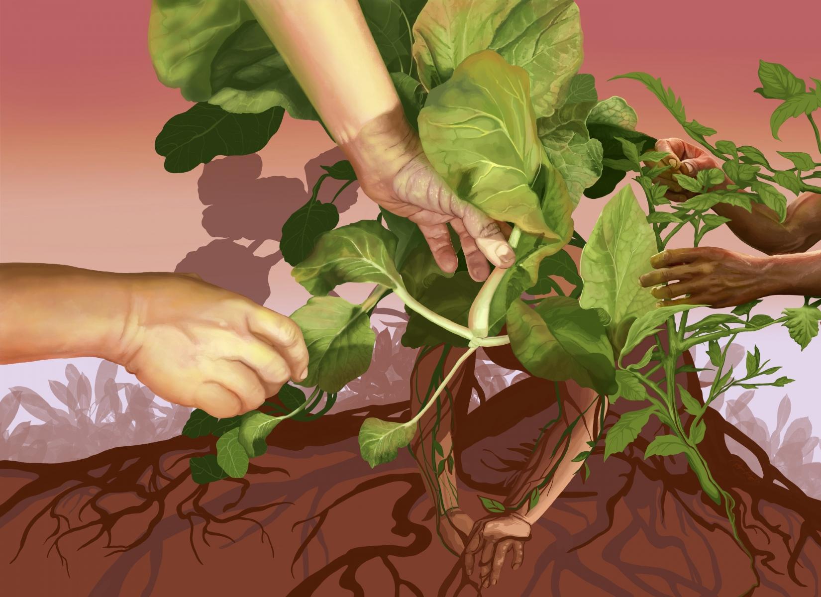 Raysa_Cuidar-nuestra-tierra-es-cuidarnos