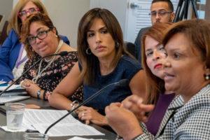 La procuradora de las mujeres Lersy Boria durante vista pública en el Senado