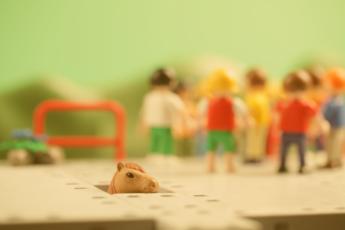 Apuestan por juguetes sin etiquetas